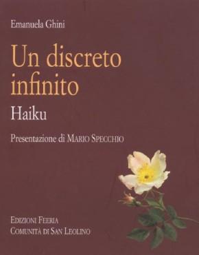 Discreto infinito - copertina